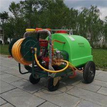 全新300升地头扯管打药机 低耗油 农用汽油喷雾器 码头消毒高压清洗机