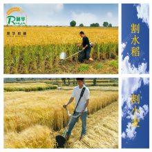 一步到位汽油锄草松土机 农用多功能割草机 园林轻便割灌机