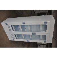 双开门带玻璃视窗实验室器皿柜高校实验室药剂柜药房器皿储存柜PP药品柜现货