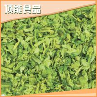 热卖 顶能绿色高丽菜 健康优质高丽菜 价格公道