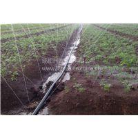 滴灌带 农田节水灌溉配件,成都洲海科技详细