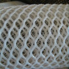 养殖网塑料平网 塑料平网生产线 珍禽养殖网