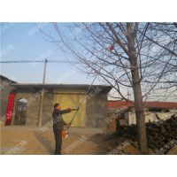 长春园林白桦树修枝高枝锯 大树锯切用油锯 耐用便宜的高枝锯