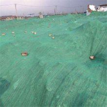 防尘盖土网 环保用网 盖沙子绿网