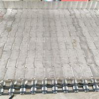 供应金属链板 卓远ZYSS203不锈钢挡板链板 输送蔬菜食品防滑 结实耐用
