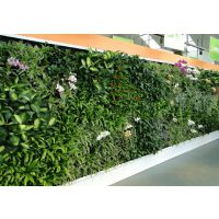 广东厂家批发定制假草墙仿真植物墙装饰草皮仿真植物