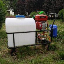热销款汽油手推打药机 高压农作物喷雾器 养殖场消毒打药机