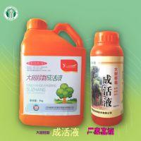 大树移栽成活液 植物营养液 木树激活液 扦插 双嘉