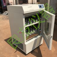 TS-1102C双层恒温摇瓶柜 立式双层空气浴恒温摇床 立式摇瓶柜