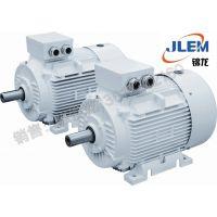 金龙高效节能电机IE3