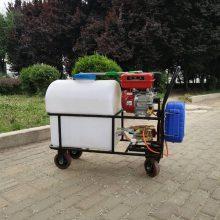 厂家直销手推式汽油打药机 玉米除草杀虫喷雾机器 果园高压机动喷雾器