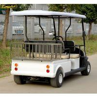 卓越定制款2座電動觀光車帶貨欄,不銹鋼材料,經久耐用