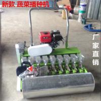 鲁强厂家生产新一代手推式12行蔬菜播种机 大棚种植机型号