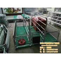 养殖母猪产床、鹤壁母猪产床、猪宝宝养殖设备