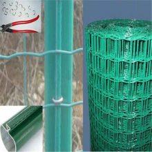 绿色圈地铁丝网 果园圈地围栏网规格 涂塑荷兰网价格