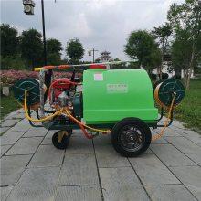 推车式高压打药机 农用轻便型打药喷雾器 高压拉管式杀虫喷雾器