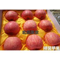 烟台栖霞红富士苹果价格烟台苹果价格