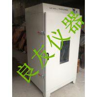 供应金坛pokerstarts国际官网LY-620L大容量高温干燥箱 数显恒温鼓风干燥箱