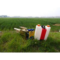 农业专用打药弥雾机 大型养殖场消毒弥雾机