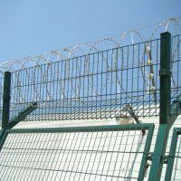 双圈护栏网浸塑围栏网果园防护网价格
