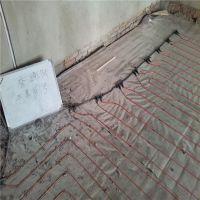 惠泽蓄热式电暖器 电暖画 碳纤维发热垫暖家庭地暖用