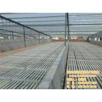 卫东区水泥漏粪板|猪宝宝养殖设备|水泥漏粪板价格