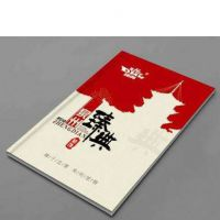 深圳企业宣传册 招商手册 说明书定制 企业精装画册设计印刷