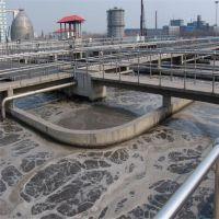临水 氨氮去除剂 氨氮降解剂 污水处理 药剂 重庆 四川 贵州 云南 量大从优