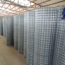 热镀锌钢丝网 电焊网哪家好 不锈钢碰焊网