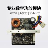 Class D-800 数字功放板 数字功放模块 音箱模块
