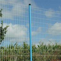 德邦供应大连养殖圈地护栏-双边浸塑铁丝护栏