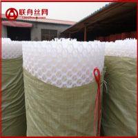 咸菜压口塑料网格 粉皮晾晒塑料垫 粉丝晾晒塑料格网环保材质