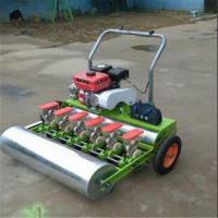鲁强生产新型8行汽油蔬菜播种机