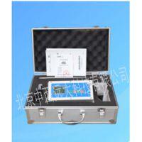 中西(LQS)泵吸式多气体检测仪 型号:ZXQC-03库号:M407498