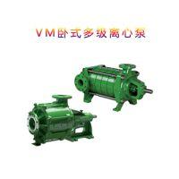 进口VM离心泵 高压化工泵 多级水泵 卧式离心水泵