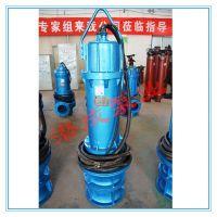 潜水轴流泵 斜拉式潜水轴流泵 雪橇式轴流泵 轴流泵的技术参数