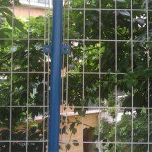 球场围栏 钢丝护栏网 交通防护栏