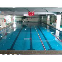 直供泳池专用水泵及配件
