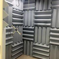 泛德声学 为马瑞利汽车设计建造消声室 消音室符合汽车零部件测试的需求