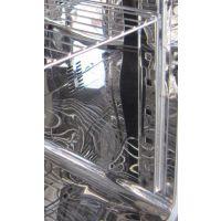 LY-250B细菌培养箱 微生物培养箱 恒温恒湿动植物培养箱
