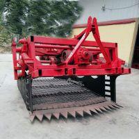 庆阳小型柴胡黄芪收获机 板蓝根药材挖掘机工作原理 价格便宜的药材起挖机厂家