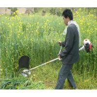 电动割草机 草坪机 除草机 打草机 宏瑞热销背负式园林家用剪草机