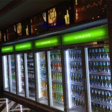 广西南宁厂家直销超市饮料柜哪个牌子质量好