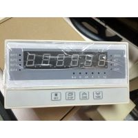 XSB5力值显示控制仪XSB5称重仪表厂家特价供应直销
