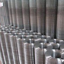 镀锌网电焊网 安平电焊网 围栏网价格