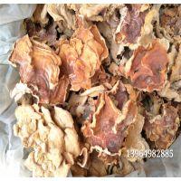 榆耳菇 榆耳菌 单片干榆耳批发零售 榆耳口感脆嫩 榆耳泡出来 榆耳干蘑菇特色食材