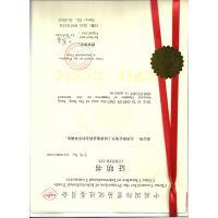 上海/北京加签 菲律宾领事加签 效率高 专业代办