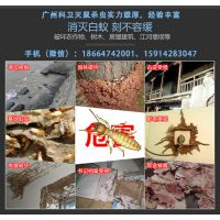 广州科控防虫灭鼠服务有限公司
