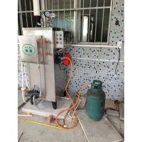 旭恩无烟煤100KG液化气锅炉厂价
