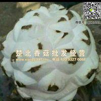 广州干香菇批发价格,广州哪里有干香菇批发?随州楚北香菇批发经营部